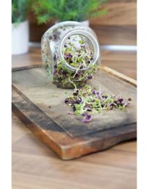 Spruitgroente pot Pikante Salade