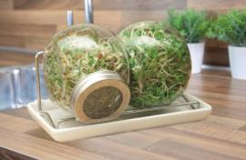 Buzzy® Organic Sprouting Duo pot met schaal BIO