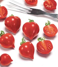 Tomaten Heartbreaker F1 (Buzzy)