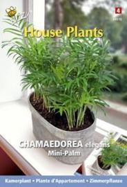 Kweek je eigen kamer plant