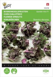 Boerenkoolspruitjes  (Kalettes® Garden Mix F1)