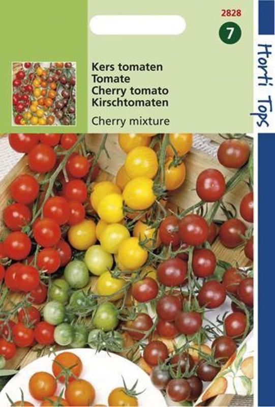 Tomaten Cherry - 4 kleuren (HT)