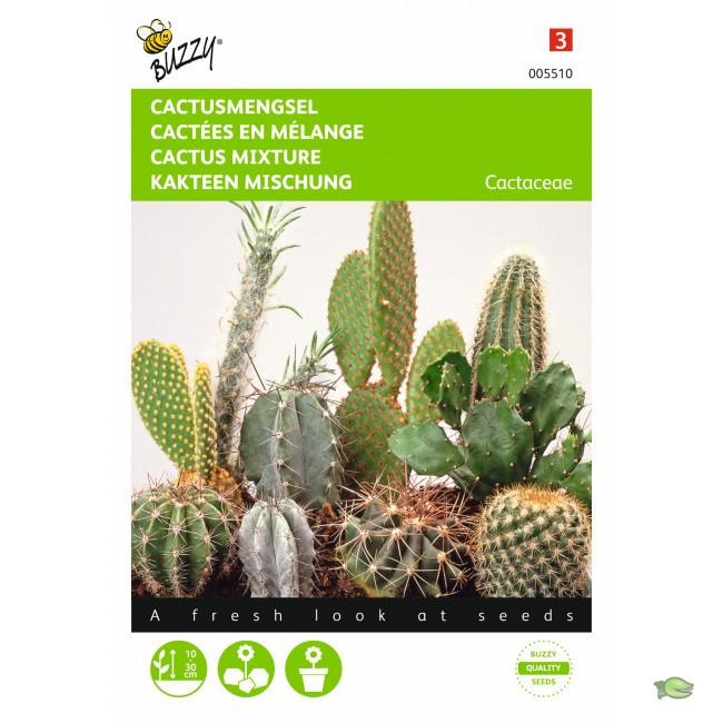 Buzzy® Cactusmengsel Vele soorten