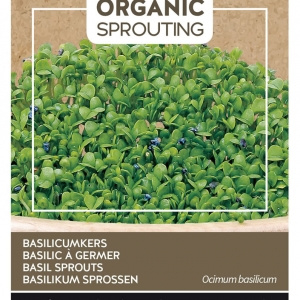 Buzzy® Organic Sprouting Basilicumkers (BIO)