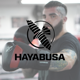 Hayabusa fightgear T3 bokshandschoenen