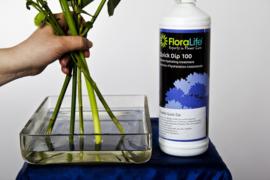 Floralife Quick Dip 1 Liter