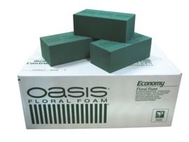 Oasis economy 20 blokken volle doos