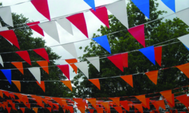 Koningsdag Vlaggenlijnen Wimpellijnen stof