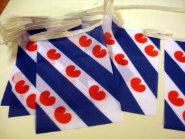 Friese vlaggenlijn rechthoek 20 x 30 cm