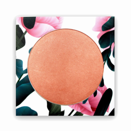 PHB Ethical Beauty : Blush For Cheeks & Eyes - Rosey Glow SPF 15 - 9 gram - Vegan - Biologisch - Halal