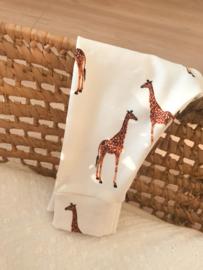 Mutsje giraffe