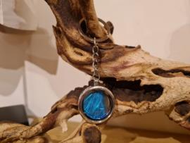 Sleutelhanger Memory Locket Silver- Blue