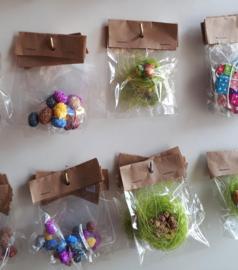 voorjaar - pasen mini's