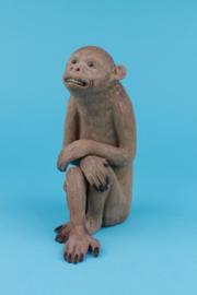 Qianlong monkey