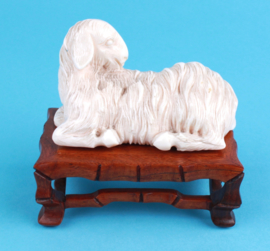 Qing sheep
