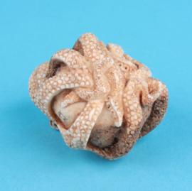 Netsuke octopus