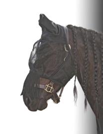 Flyshield Fringes met oren  van Harry's Horse
