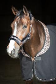 Halsterset cats - Harry's Horse