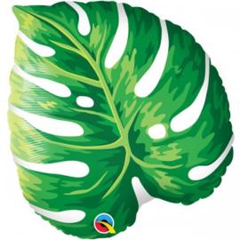 Tropisch leaf