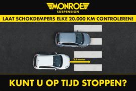 Schoonloopmat Monroe 90x60cm