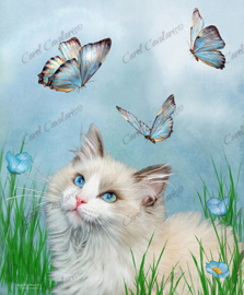 Ragdoll Kitty And Butterflies - Artwork by Carol Cavalaris