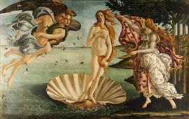 De Geboorte van Venus - Sandro Botticelli - 40 x 60 cm