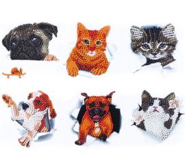 set met 6 honden-kat stickers