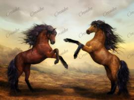 Steigerende paarden - 40 x 50 cm