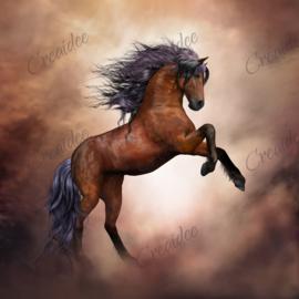 Steigerend paard - 40 x 40 cm