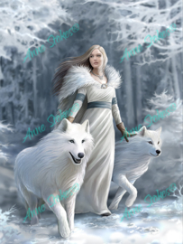Winter Guardians - Anne Stokes Collection - 40 x 50 cm