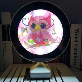 Spiegel/lamp - uil