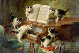 Poezen op een piano - 40 x 60 cm