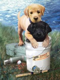 Junior - Fishing buddies