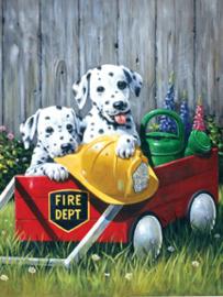 Junior - Fire Waggin