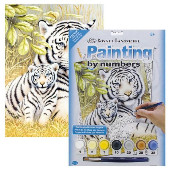 Junior - White Tiger Pair