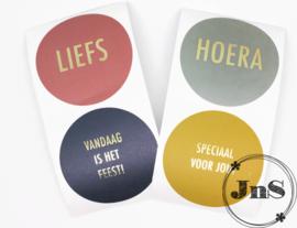 Cadeau Stickerset - Multi color - 5,5cm per 12