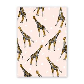 Ansichtkaart | Giraffes