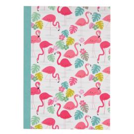 Schrift - Flamingo Bay A5