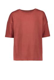 T-shirt Terra - Pexi Lexi