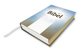 Luther Bibel - Luther Übersetzung 1984