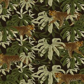 Coated Cadeaupapier 2m - Jungle tiger