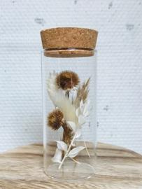Reageerbuis/kurk met droogbloemen Wit