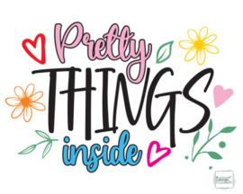 Pretty Things Inside.1