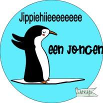 Sluitsticker Baby  Pinquin Jippiehiieeeeee J/M verpakt in PP-zakjes.