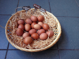 Super blije kip eieren