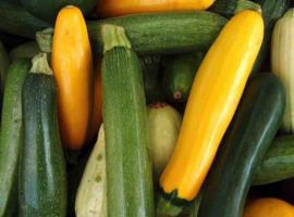 Courgette (groen)