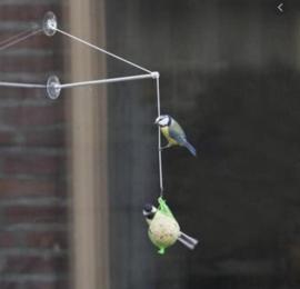 Birdswing