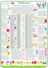 Tuinposter: Plukbloemen