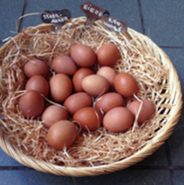 Doosje van 6 eieren