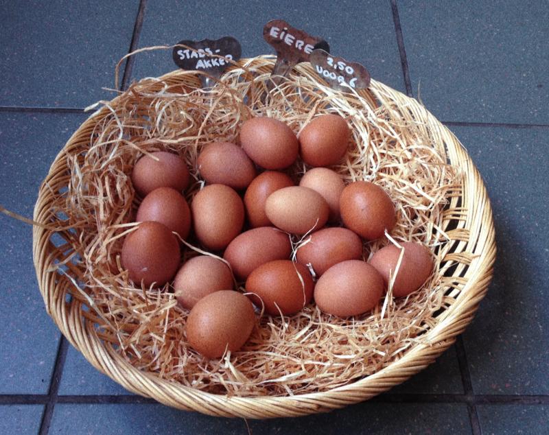 Eierpakketje 10 stuks